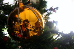 Day 359: Christmas Bauble (delikz) Tags: christmas city morning winter light portrait urban sun sunlight selfportrait color colour reflection green home me portugal horizontal self canon ball myself gold daylight town photo am europe december image interior sunday illumination clarity indoor fresh photograph oeiras daytime inside digitalcamera 365 bauble digitalphoto outtake sunnyday digitalphotography colorphoto carnaxide christmasball srl northernhemisphere colourphoto colourphotography 2011 project365 christmasbauble 2512 colorpicture p365 colourimage 21thcentury 365project 365alternative colorpic 2010s 365bside photoofmyself colourpicture colourpic canon1000d 3rdmillenium photoofthephotographertakingaphoto portugalthirdoldesttown