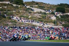 2013-MotoGP-18-Valencia-Sunday-0572.jpg (PHOTO.GP) Tags: valencia monster 1 hrc 99 motogp 1000s alpinestars jorgelorenzo 2013 round18 semakindidepan teamfactoryyamaha