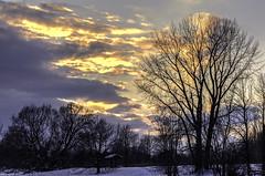 Melancholia (mircea2309) Tags: trees winter sunset color silhouette clouds melancholia larsvontrier mygearandme mygearandmepremium mygearandmebronze mygearandmesilver mygearandmegold outstandingromanianphotographers ilesdesbouchervilles