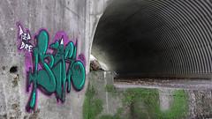 Rise (Slum Dawg Millionaire) Tags: california railroad creek forest train graffiti bay moss north tunnel east rise northern hnr