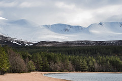 Loch Morlich (Matt 82) Tags: mountains landscape march scotland nikon scenery scottish glen loch cairngorms morlich scottishhighlands glenmore scottishheritage scottishhistory 78mm d5100 nikonafsdxnikkor55300mmf4556gedvr matt82