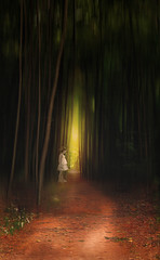 Enchanted (irina_escoffery) Tags: