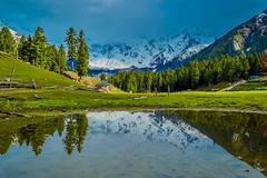 Nanga Parbat (bilalqasim) Tags: blue sky mountain reflection killer nangaparbat killermountain fairymeadows thekiller gilgitbaltistan