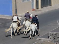 El Burrero (Risager) Tags: horses riders grancan elburrero