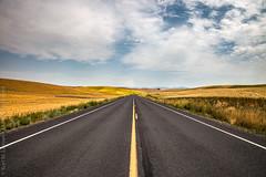 A Palouse Road (Kurt Lawson) Tags: road blue brown field yellow clouds washington open farm wheat grain tracks farmland crop fields wa farms palouse copyrighted