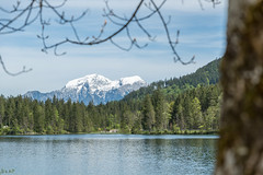 Aussicht (hellrac3r) Tags: mountain lake berg germany bavaria berchtesgaden frhling hintersee
