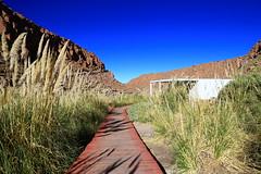 TERMAS de PURITAMA (Asterivaldo) Tags: chile sanpedrodeatacama desiertodeatacama atacamadesert termasdepuritama asterivaldo