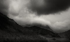 Ullswater b&w10 final (markrbowman) Tags: trees blackandwhite monochrome clouds forest skies stormy hills ullswater