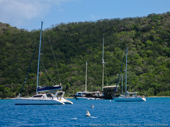 The Willie-T (William Thornton) floating bar (3scapePhotos) Tags: travel sea vacation bar sailboat island islands boat sailing floating william virgin tropical british caribbean willie tropics thornton bvi britishvirginislands normanisland