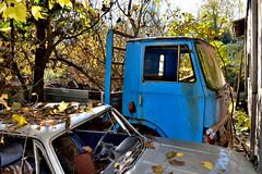 fiat 90NC (riccardo nassisi) Tags: auto abandoned car rust rusty scrapyard wreck scrap wrecked ruggine relitto pavia rottame fornace epave abbandonata