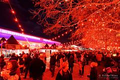 20160616-37-Dark MOFO 2016 Winter Feast (Roger T Wong) Tags: lighting red people food art festival night crowd australia tasmania hobart stalls winterfest 2016 pw1 sony1635 princeswharf1 rogertwong darkmofo sel1635z sonya7ii sonyilce7m2 sonyalpha7ii sonyfe1635mmf4zaosscarlzeissvariotessart