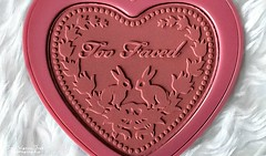 Too Faced Blush (The Vegan Taff Photography) Tags: pink rabbit bunnies texture heart makeup powder rabbits blush embossed blusher toofaced