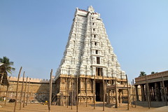 Une tour tincelante (Chemose) Tags: india white tower architecture canon temple eos tour january 7d hindu hinduism janvier blanc tamilnadu inde southindia trichy gopuram hindouisme hindou tiruchirapalli ranganathaswamy sriranganathaswamy vellai indedusud vischnu vischnou