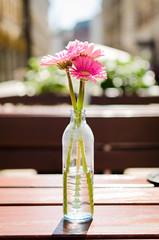 Happy Weekend // Hamburg (//Sebastian) Tags: pink light summer brown hot flower green water beautiful germany relax happy bottle warm pretty mood good weekend hamburg warmth enjoy laidback ease colonnaden goodweather eisschmidt