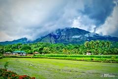 Mt. Napulak (Bert Esposado) Tags: mountains nature landscape outdoor hiking famous philippines mountaineering iloilo mtnapulak napulak