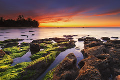 Tinduk Terongkongan, Kudat, Sabah (Adly Wook) Tags: ocean longexposure trip travel light sunset red sea sky cloud seascape motion reflection art beach rock stone composition sunrise canon landscape seaside rocks exposure outdoor dramatic serene tone mossy sabah 6d oversea leefilter rgnd sighray raymaster