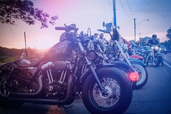 Sundown You Better Take Care #themotosocialtoronto #rooster #broadview #harley #lifeon2 #ontariomotoroads #freedommachine (dzgnboy) Tags: themotosocialtoronto rooster broadview harley lifeon2 ontariomotoroads freedommachine
