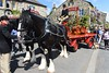 Dray Horse (gibbo07) Tags: uk england horse mountain beer countryside walk yorkshire may hike gamecock yorkshiredales 2016 austwick gibbo briang thwaites drayhorse thwaitesbrewery bgibbo bgibson gibbo07 bgibbo07 may2016 danielthwaitesbreweryblackburn thwaitesbreweryblackburn