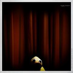Sad to say goodbye (Angelo Trapani) Tags: duck fine finale quack papero storia ducktales avventura sipario