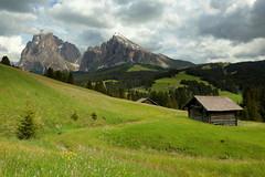 Sassolungo e Sassopiatto (annalisabianchetti) Tags: italy mountains alps montagne dolomites dolomiti sassopiatto sassolungo trentinoaltoadige