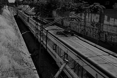 Ceranas (Miguel Angel Prieto Ciudad) Tags: madrid white black monochrome train spain rail railway mstoles monocromtico