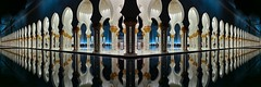 Abudhabi Grand Mosque (stefan.lafontaine) Tags: mirror nightshot united uae grand olympus mosque arabic emirates zayed abu dhabi em1 vae
