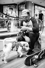 Le skateur et son chien (LACPIXEL) Tags: urban blackandwhite dog chien man paris france blancoynegro nikon flickr noiretblanc perro skate skater urbano capitale fx hombre homme urbain sygma d4s nikonfrance lacpixel