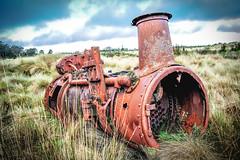 Remains Of Steam Engine (paulledger81) Tags: steamengine boiler waratah tasmania tarkine relic outdoor australia rust vintage iron steel sawmill