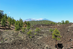 San Francisco Peaks from observation platform (criggle1) Tags: arizona parks lanscapes