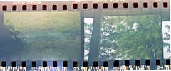 7 (kylen.louanne) Tags: film 35mm experimental upnorth yashica expiredfilm alpena alternativeprocess summer2012