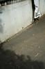 DSC_4944.jpg (hiro_522) Tags: iso100 nikon 24mm f18 hpexif 13200sec d7000