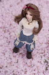 Cherry blossom (A place for Millimina) Tags: annie bjd msd dollzone dzannie