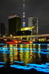 SDIM6362 (Shiruchi) Tags: sky tree japan river tokyo  sumida hotaru  dp2 skytree sgima