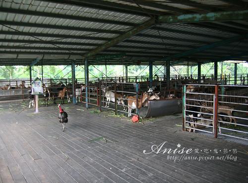 宜農牧場_038.jpg