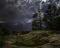 Extended liberties (Dave Arnold Photo) Tags: flowers sunset usa storm mountains tree nature wet beautiful rain clouds forest canon wonderful point landscape photography us photo nationalpark photographer image top gorgeous awesome arnold north picture peak stormy pic tourist best nationalforest howto getty 5d yellowstone thunderstorm wildflowers geography wyoming geology wilderness index thunder stormysky pilot shoshone sunray ynp wy snowcap mkiii wyo whereto northwestwyoming beartooth absaroka indexpeak davearnold northernwyoming hwy212 pilotpeak davearnoldphotocom mygearandme hghway212