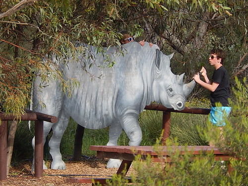 White Rhino Statue