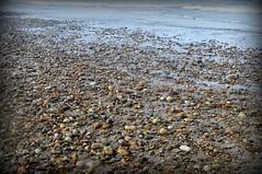 el mar de piedras (L C L) Tags: sea espaa beach water mar spain agua stones tide shoreline asturias playa piedras xago orilla marea cantbrico lcl 2013 nikond90 loretocantero mardepiedras