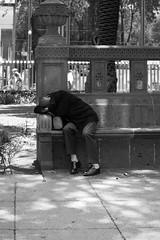 Hiding a Dream... (Jesus Alducin) Tags: street city parque people blackandwhite bw public mexico town avenida calle alone view sony centro streetphotography free ciudad center elder rest worker avenue reforma popular share callejera streetphotographer adulto sonyalpha alducin sonyalpha390 jesusalducin