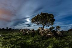 Rodeado (raul_lg) Tags: longexposure sky espaa moon tree verde bulb night clouds canon arbol noche spain stones luna cielo nubes nocturna gree piedras caceres linterna mark3 largaexposicion barruecos raullopez canon1635 iluminaicon 5dmarkiii raullg