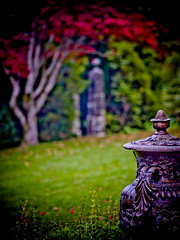"enchanted garden • <a style=""font-size:0.8em;"" href=""http://www.flickr.com/photos/44919156@N00/14070239031/"" target=""_blank"">View on Flickr</a>"