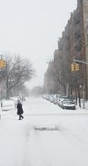 Winter Storm Juno (Barney A Bishop) Tags: nyc newyorkcity snow newyork brooklyn unitedstates snowstorm samsung blizzard juno snowday nx30 imagelogger