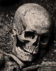 Hodie mihi, cras tibi. (Maurizio Aresu) Tags: maurizioaresu beautyiseverywhere blackwhite hodiemihicrastibi life skull grave teschio tomba sepoltura