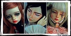Comics (MaD (parker) - Dolls, Customisation & The Cat) Tags: dolls sd bjd dim poupes crobidoll glorydoll bellosse