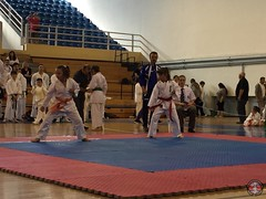 stefanou_15_5_2016_knockdown_51