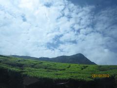 Munnar 142.JPG (invisibleindian2001) Tags: munnar