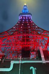 P5030377 (Zengame) Tags: tower japan architecture night pen tokyo illumination landmark olympus illuminated jp  tokyotower  zuiko   penf     mzuiko 12mmf20 mzuikodigitaled12mmf20 livecomposite