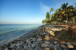 India - Kerala - Varkala - Coastline - 84
