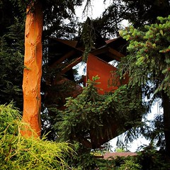 custom #ceder #totempole with a... (dustinfeider) Tags: seattle rust totempole custom hang patina ceder triacontahedron uploaded:by=flickstagram treehousemasters instagram:venuename=seattle2cwashington instagram:venue=213941548 o2treehouse instagram:photo=12341711859169165441598741643
