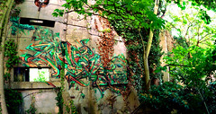 Weis_Collection printemps / tendance automne 2016. (blairniemichelle) Tags: art aerosol ambiance atg abandonee abandone abstrait assemblage entrepot explore explorer entrée 3d rouille tag tags tracedirect terrain urbex mur lumière idf incendie paint panoramique paris painting detail degrade feu graff graffiti moisissure amwa weis patchwork canz decay green tree trees nature herbst light