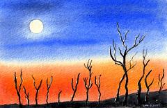 Sun Burnt Landscape - Watercolour (elliott.lani) Tags: trees sunset sky orange sun art nature painting landscape outdoors skies bright outdoor bluesky watercolour australianlandscape lani allrightsreserved burnttrees bluebackground burntsienna sunburntcountry queenslandlandscape elliottlani lanielliott